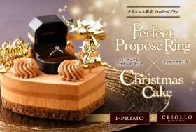 プロポーズ専用クリスマスケーキ