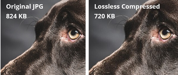 lossless-comparison-photos