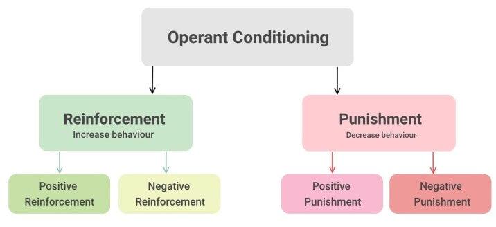 例 オペラント 条件付け